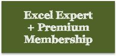 Excel Expert Course + Premium